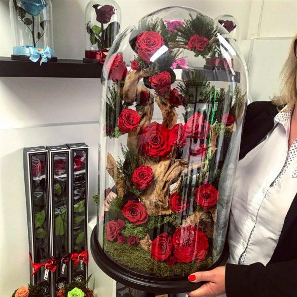 Extra nagy méretű  80 cm Búrába zárt Örök Rózsafa kompozíció / Forever Rose - Vörös