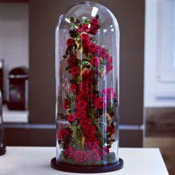 Extra nagy méretű  50 cm Búrába zárt Örök Rózsafa kompozíció / Forever Rose - Burgundy