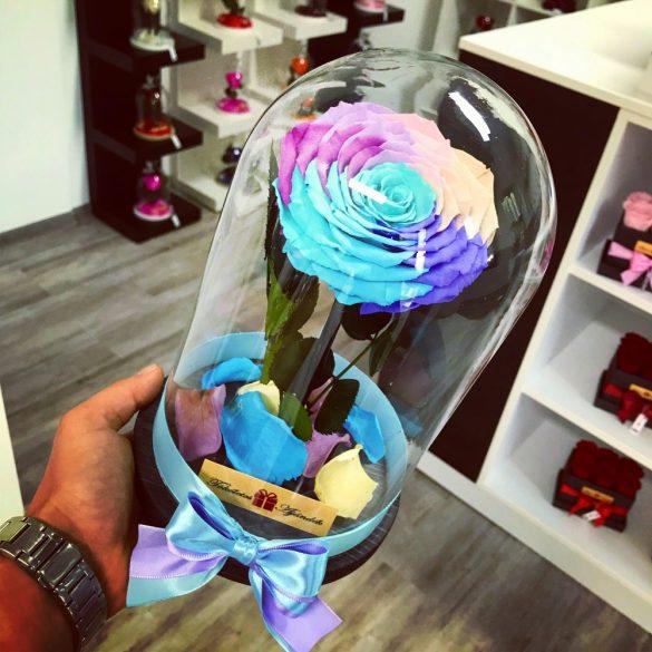 Nagy méretű búrába zárt King Örök Rózsa / Forever Rose - Candy Rainbow