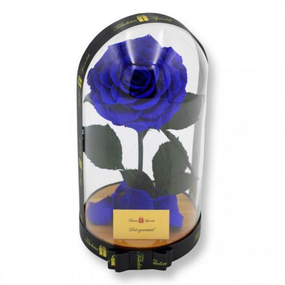 Nagy méretű búrába zárt King Örök Rózsa / Forever Rose - Kék