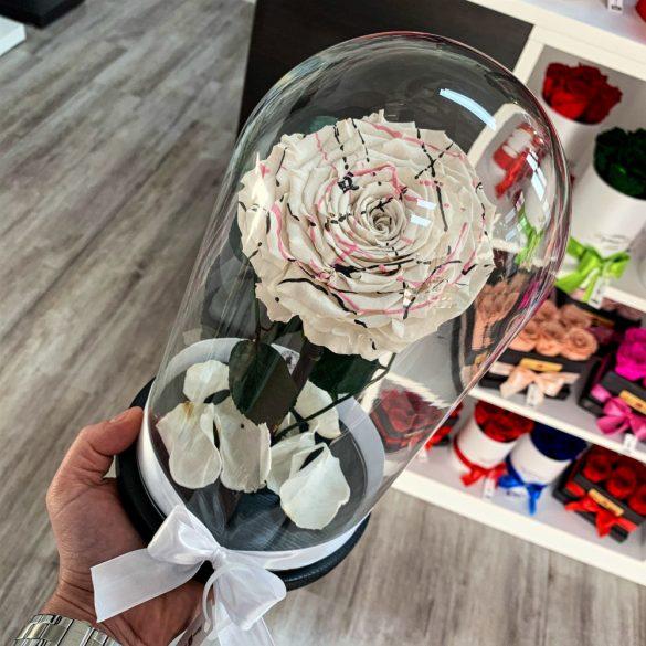 Nagy méretű búrába zárt FESTIVA Örök Rózsa / Forever Rose - Fehér