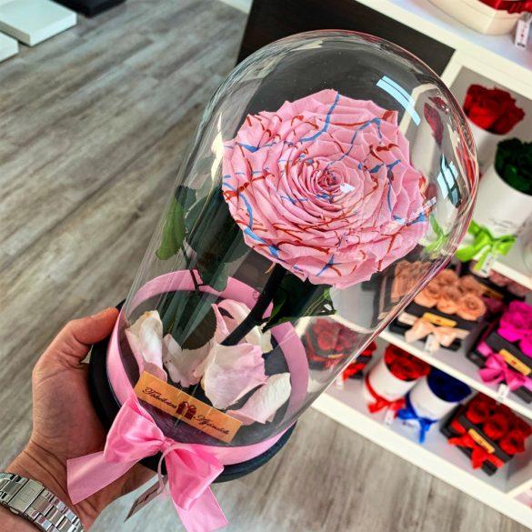 Nagy méretű búrába zárt FESTIVA Örök Rózsa / Forever Rose - Rózsaszín