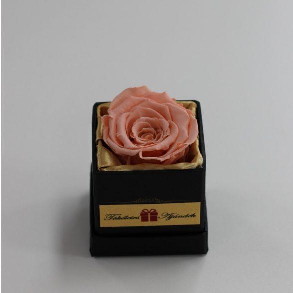 Örök rózsa / Forever rose exkluzív kocka díszdobozban - Barack