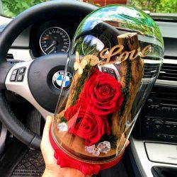 Nagy méretű búrába zárt Örök Rózsa kompozíció / Forever Rose - Vörös