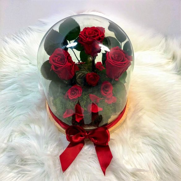 Búrába zárt Örök Rózsa kompozíció / Forever Rose - Vörös