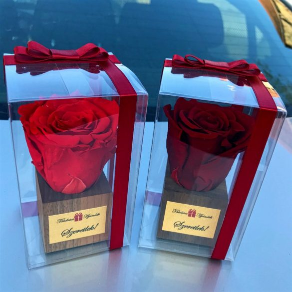 PVC dobozos Örök Rózsa fa kockában / Forever Rose - Vörös