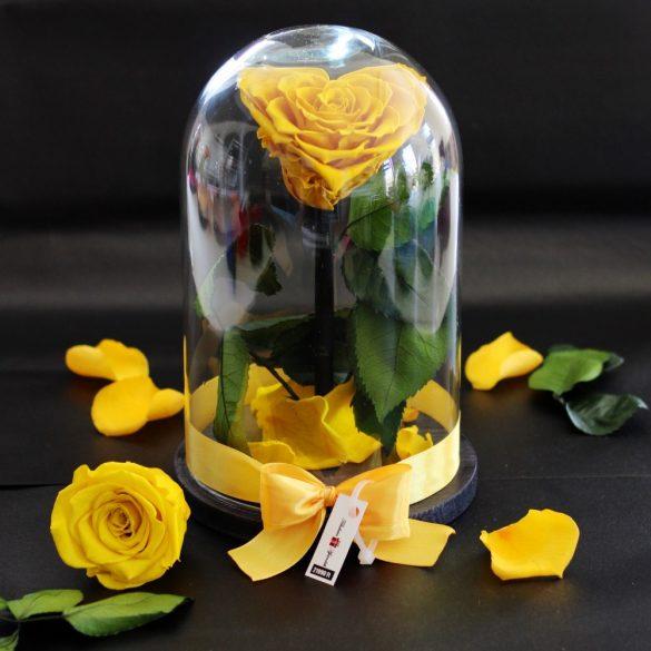 Nagy méretű búrába zárt Szív alakú Örök Rózsa / Forever Rose - Citromsárga