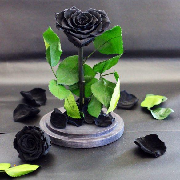 Nagy méretű búrába zárt Szív alakú Örök Rózsa / Forever Rose - Fekete