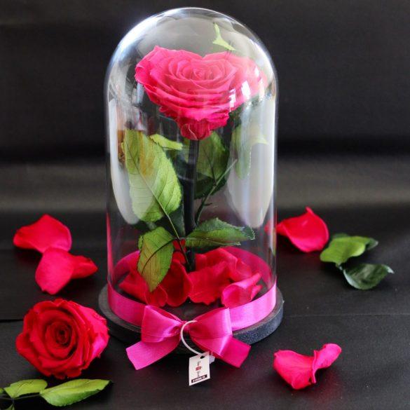 Nagy méretű búrába zárt Szív alakú Örök Rózsa / Forever Rose - Pink