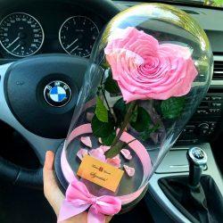 Nagy méretű búrába zárt Szív alakú Örök Rózsa / Forever Rose - Rózsaszín
