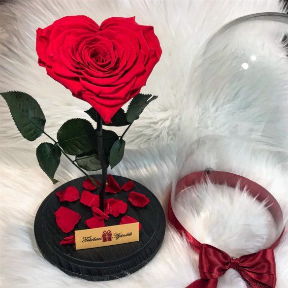 Nagy méretű búrába zárt Szív alakú Örök Rózsa / Forever Rose - Piros