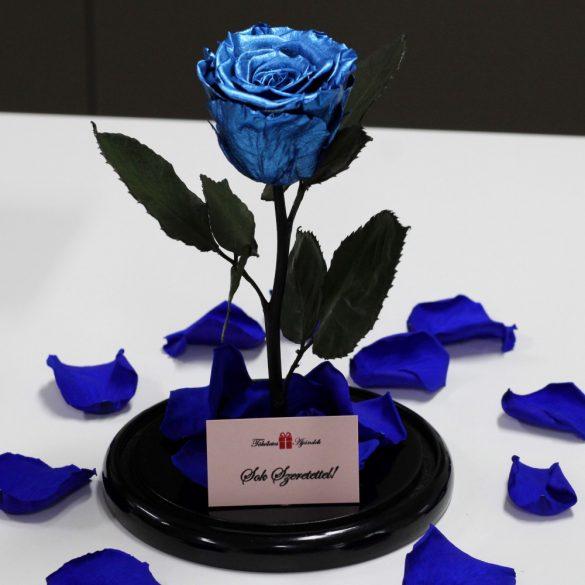 Nagy méretű búrába zárt METÁL Örök Rózsa / Forever Rose - Sötétkék
