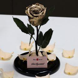 Nagy méretű búrába zárt METÁL Örök Rózsa / Forever Rose - Arany