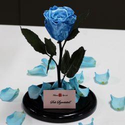 Nagy méretű búrába zárt METÁL Örök Rózsa / Forever Rose - Világoskék
