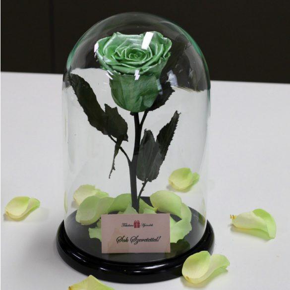Nagy méretű búrába zárt METÁL Örök Rózsa / Forever Rose - Menta