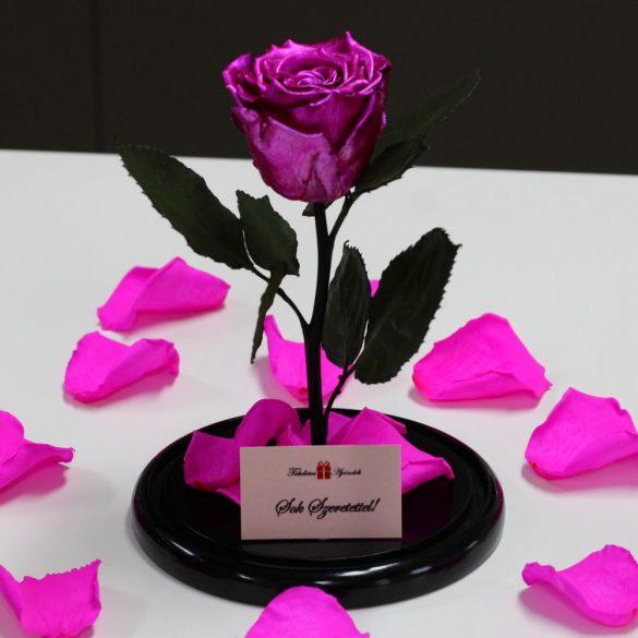 Nagy méretű búrába zárt METÁL Örök Rózsa / Forever Rose - Pink