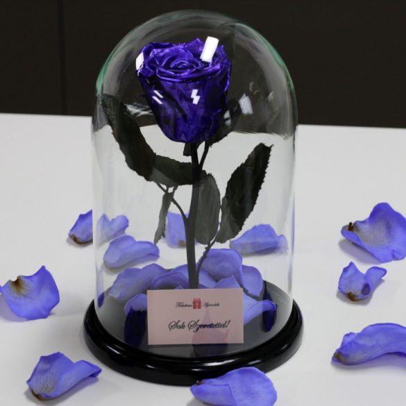 Nagy méretű búrába zárt METÁL Örök Rózsa / Forever Rose - Lila