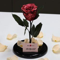 Nagy méretű búrába zárt METÁL Örök Rózsa / Forever Rose -Rose Gold
