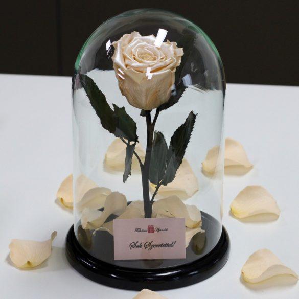 Nagy méretű búrába zárt METÁL Örök Rózsa / Forever Rose - Szatén