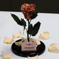 Nagy méretű búrába zárt METÁL Örök Rózsa / Forever Rose - Toffee