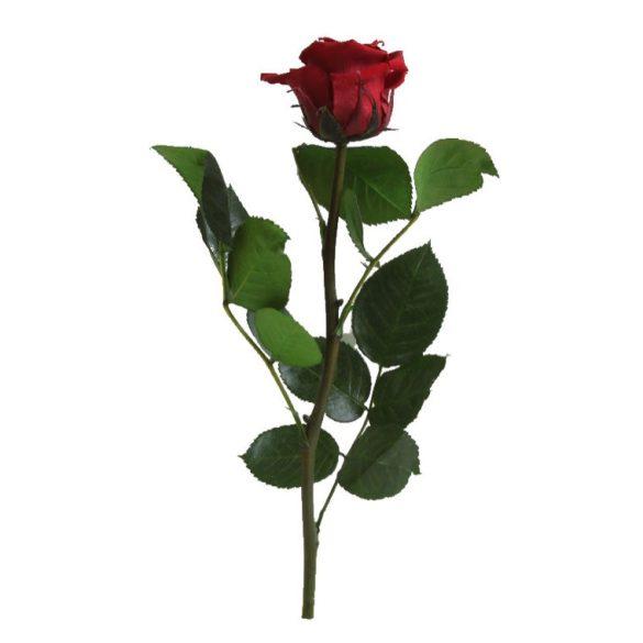 Örök Rózsa szál / Forever Rose PVC díszdobozban 30 cm - Vörös