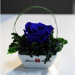 XL Örök rózsa / Forever Rose Kerámia tálban - Sötétkék