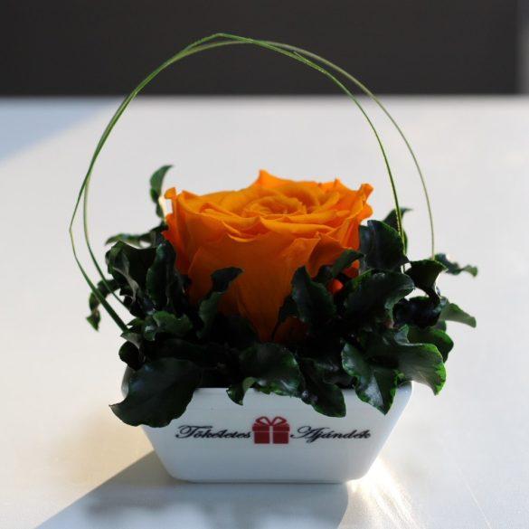 XL Örök rózsa / Forever Rose Kerámia tálban - Narancs