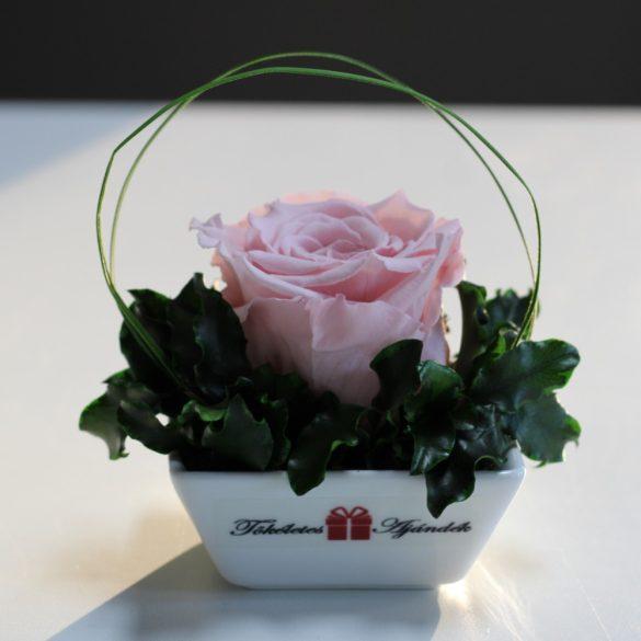 XL Örök rózsa / Forever Rose Kerámia tálban - Rózsaszín