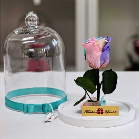 Standard búrába zárt Örök rózsa / Forever Rose - Candy Rainbow
