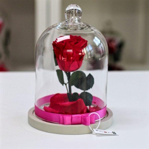 Standard búrába zárt Örök rózsa / Forever Rose - Dark pink