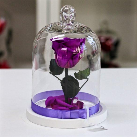 Standard búrába zárt Örök rózsa / Forever Rose - Lila