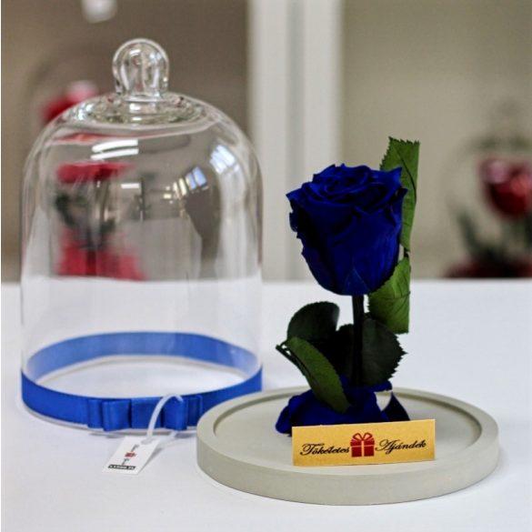 Standard búrába zárt Örök rózsa / Forever Rose - Sötétkék