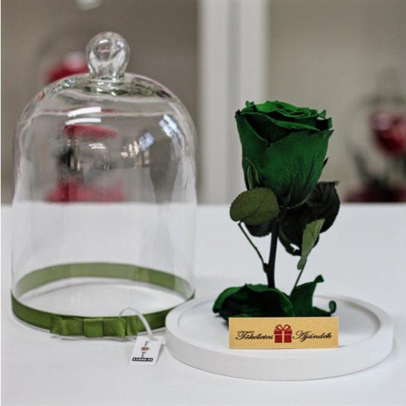 Standard búrába zárt Örök rózsa / Forever Rose - Sötétzöld