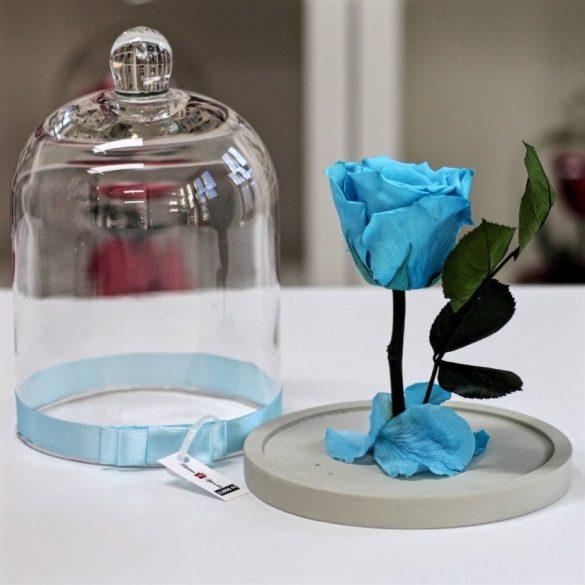 Standard búrába zárt Örök rózsa / Forever Rose - Világoskék