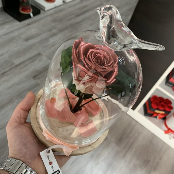 Standard méretű búrába zárt Örök rózsa / Forever Rose - Rose Gold