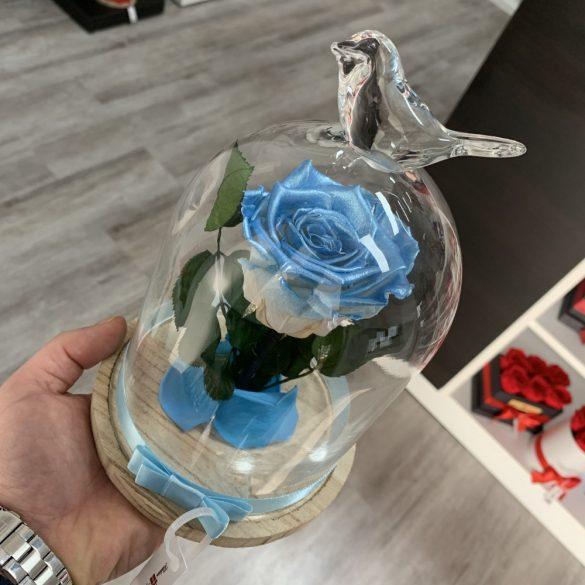 Standard méretű búrába zárt Örök rózsa / Forever Rose - Világoskék Metál