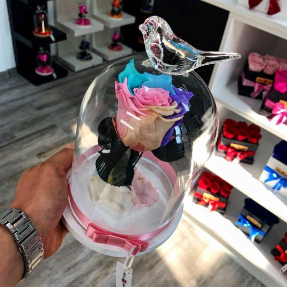 Standard méretű búrába zárt Örök rózsa / Forever Rose - Candy Rainbow
