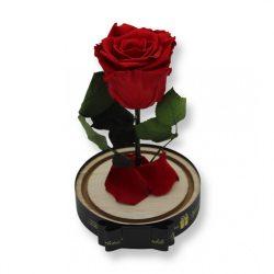Közepes méretű búrába zárt Örök rózsa / Forever Rose - Vörös